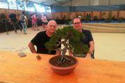 Partecipazione al Festival del Bonsai - Andora 2018